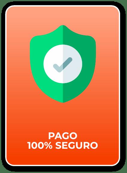 pago-100-seguro